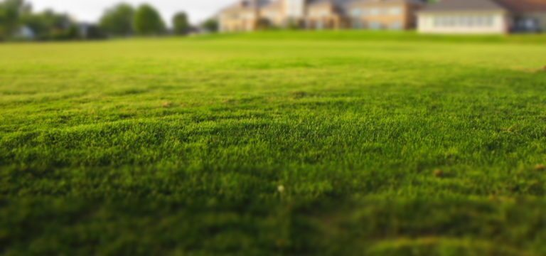 Commercial Lawn Maintenance In Lebanon Pa Barr